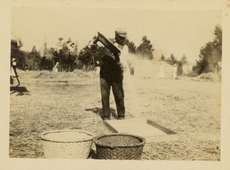 Photograph of a man winnowing rice in a seagrass basket, Mulberry Plantation, Berkeley County, South Carolina, 1918, courtesy of Historic Charleston Foundation.