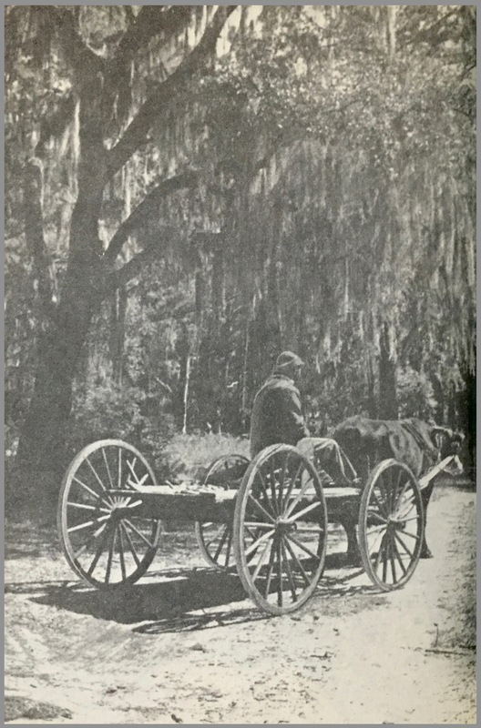 Ox Cart with Sapelo Island resident, Sapelo Island, Georgia, 1930s, from Drums and Shadows.