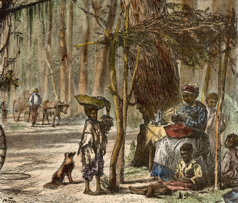 """""""A Road-side Scene,"""" from Picturesque America, by Harry Fenn and William Cullen Bryant, Charleston, South Carolina, 1870, courtesy of College of Charleston Libraries."""