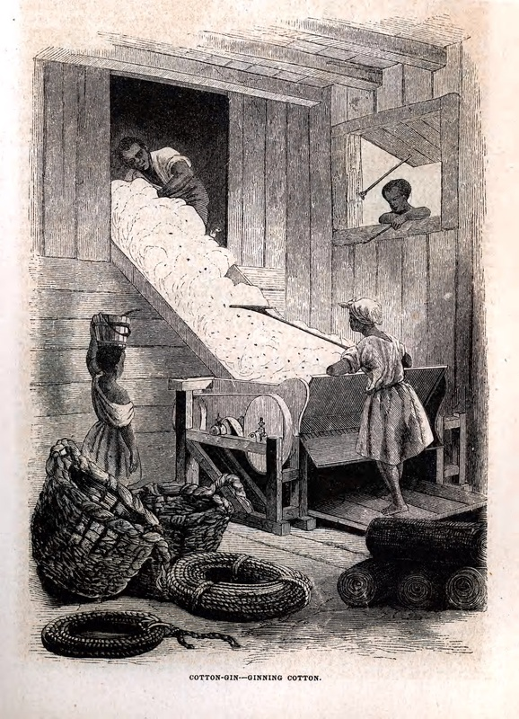 Engraving depicting enslaved workers ginning cotton, from Harper's Weekly Magazine, 1854, courtesy of Library Company of Philadelphia.