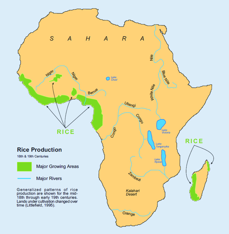 Generalized patterns of rice production in Africa in the eighteenth and nineteenth centuries, 1995, courtesy of the South Carolina Geographic Alliance.