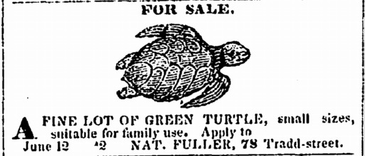 <span><span>Newspaper advertisement</span> by Nat Fuller, </span><em>Charleston Courier</em><span>, June 12, 1855,</span> courtesy of America's Historical Newspapers.