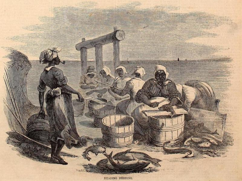"Engraving titled ""Heading Herring"" depicting a group of women cleaning fish, from Harper's Weekly Magazine, New York, New York, 1866, courtesy of the Internet Archive."