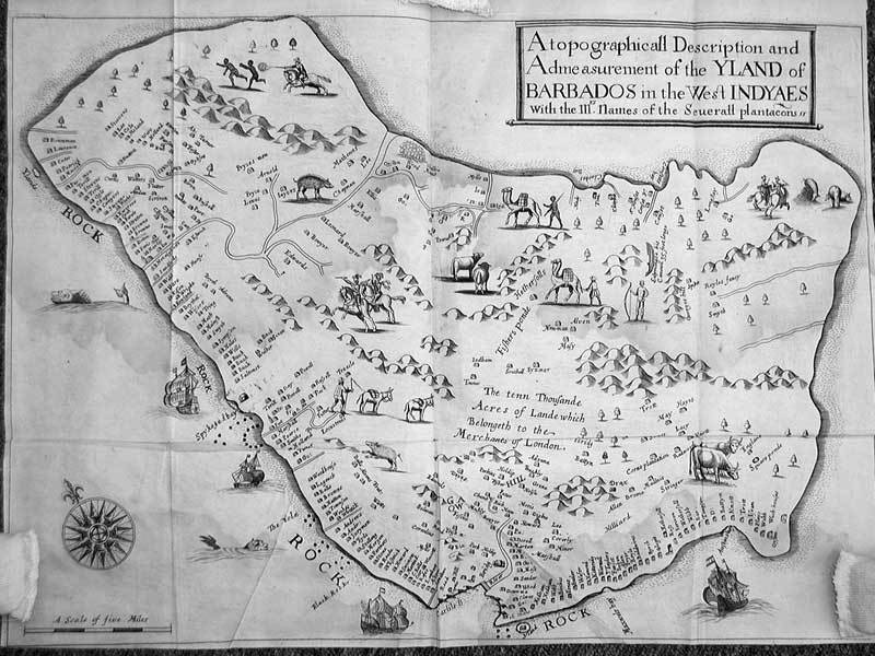 Map of Barbados, by Richard Ligon, ca. 1647-50, courtesy of the Latin American Library, Tulane University. Ligon, who lived in Barbados between 1647 and 1650, wrote about the enslaved society that contributed a significant number of the first permanent African descended settlers in Carolina. Large sugar estates identified on Ligon's map occupied the best land on the island, displacing many small farmers. By the mid seventeenth century, an enslaved black majority grouped together on large plantations was a constant source of anxiety to the declining white population. Ligon may have been thinking of a failed slave revolt that took place in Barbados in the 1640s when he included the drawing of runaways being pursued by the militia on the map. The militia were responsible for controlling the slave population and defending white English rule on the island.