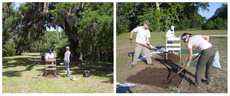 Excavations in the Avenue of Oaks, photograph by Kimberly Pyszka, Stono Preserve, 2008.