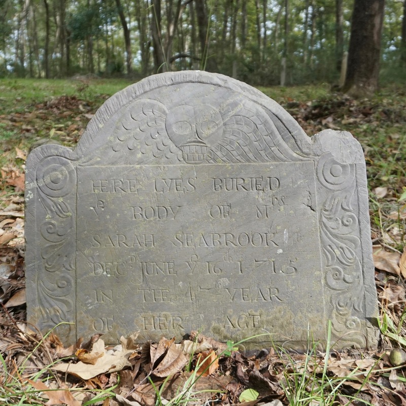 Gravestone of Sarah Seabrook, photograph by Mills Pennebaker, Stono Preserve, 2019.
