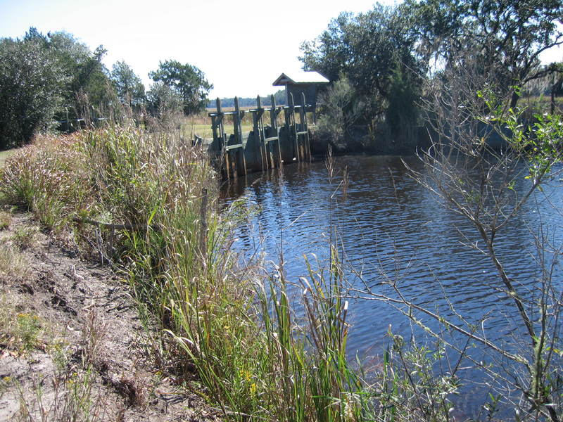 <p>Embankment on former inland rice plantation at Caw Caw Interpretive Center, image by Mary Battle, Ravenel, South Carolina, March 2012.</p>