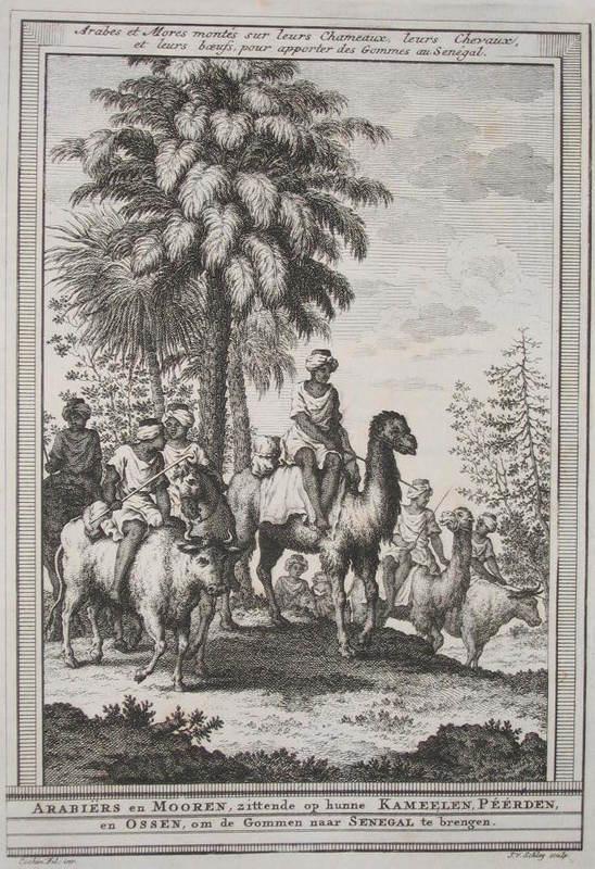 Arabieres en Mooren, zittende op hunne kamelen péérden en ossen, om de gommen naar senegal te bregen (Arabs and Moors on camels, horses and oxen bringing Gum sacks to Senegal), from <em>Tooley's Dictionary of Mapmakers, Volume 3</em>, 1778.