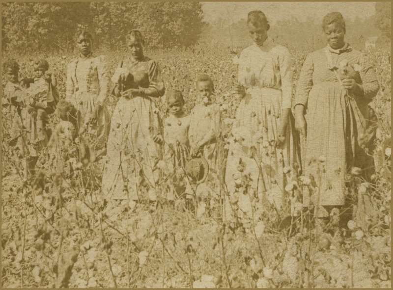Carte-de-visite of women and children in a cotton field, circa 1860s, courtesy of the National Museum of African American History and Culture.