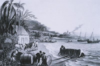 Loading sugar and molasses for shipping to England from Barbados, ca. 18th century, courtesy of Barbados Museum and Historical Society.