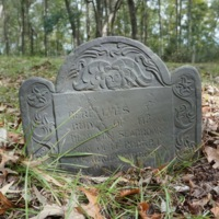 Gravestone of Benjamin Seabrook, photograph by Mills Pennebaker, Stono Preserve, 2019.