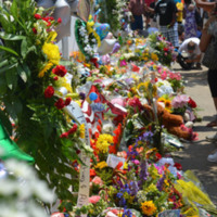 Flowers and other items left by visitors outside the Emanuel AME Church in the weeks following the mass shooting, June 20, 2015, Charleston, South Carolina, courtesy of ABC New4 WCIV-TV.