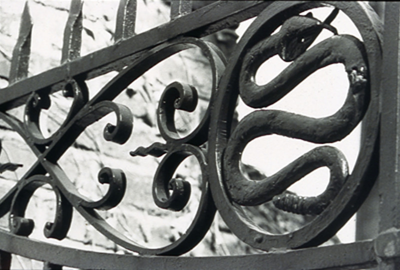 Detail of gate at the Christopher Gadsden house, 329 East Bay Street, Charleston, South Carolina, 1993, photograph by Claire Y. Greene, Philip Simmons Collection, courtesy of the Avery Research Center.