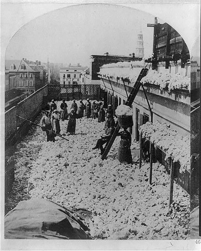 """Cotton warehouse, drying cotton,"" Charleston, South Carolina, published by by B. W. Kilburn, Littleton, N.H., ca. 1879, courtesy of the Library of Congress, Prints and Photographs Division."