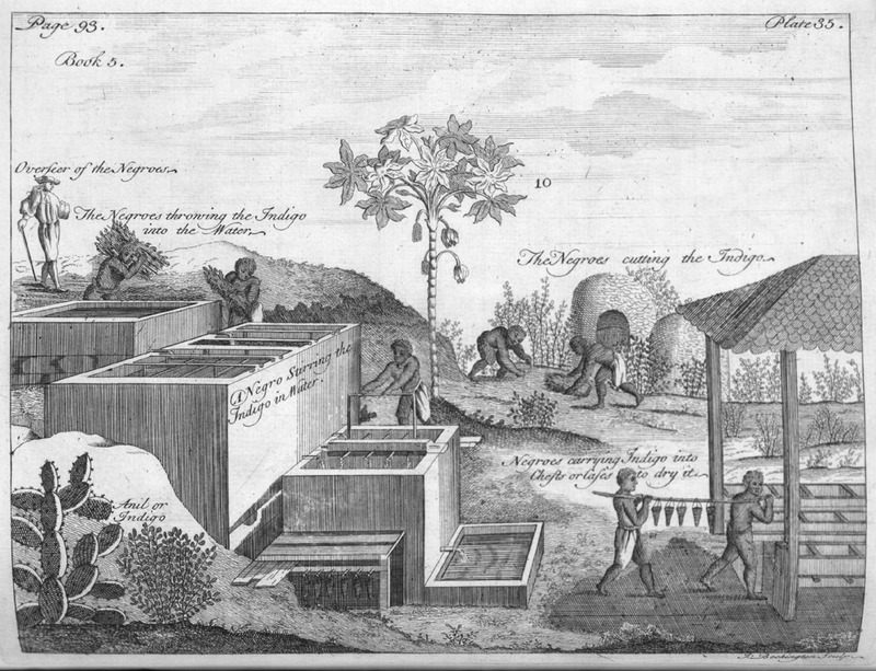 "Depiction of indigo manufacturing in the French West Indies during the 18th century, from Pierre Pomet's work <em>A Complete History of Drugs</em>, 1748, courtesy of University of Virginia Special Collections Library.<a href=""http://small.library.virginia.edu/""><br /></a>"
