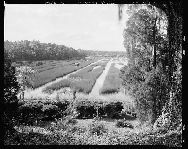 Mulberry Plantation, image by Frances Benjamin Johnston, Moncks Corner, Berkeley County, South Carolina, 1938, courtesy of Library of Congress Prints and Photographs Division.