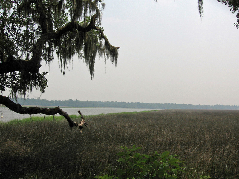 View of the Ashley River near Charleston, South Carolina, image by Anne G. Dolescum, June 2011.