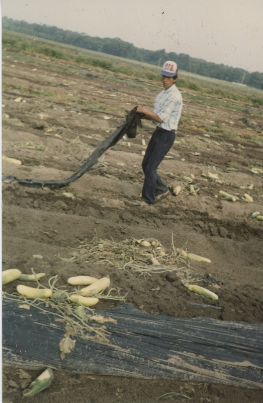 Trabajador agrícola, Wadmalaw Island, Carolina del Sur, 1996, cortesía de Marina López.